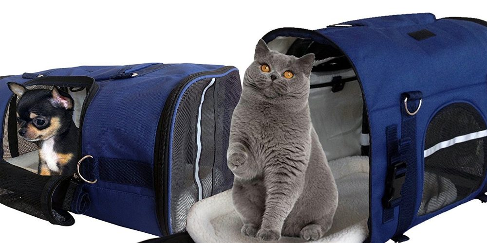 Review: 6-in-1 Airline Approved Pet Carrier Backpack