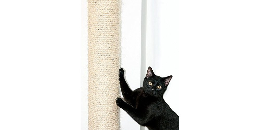 Review: Wall Mounted Cat Scratching Post