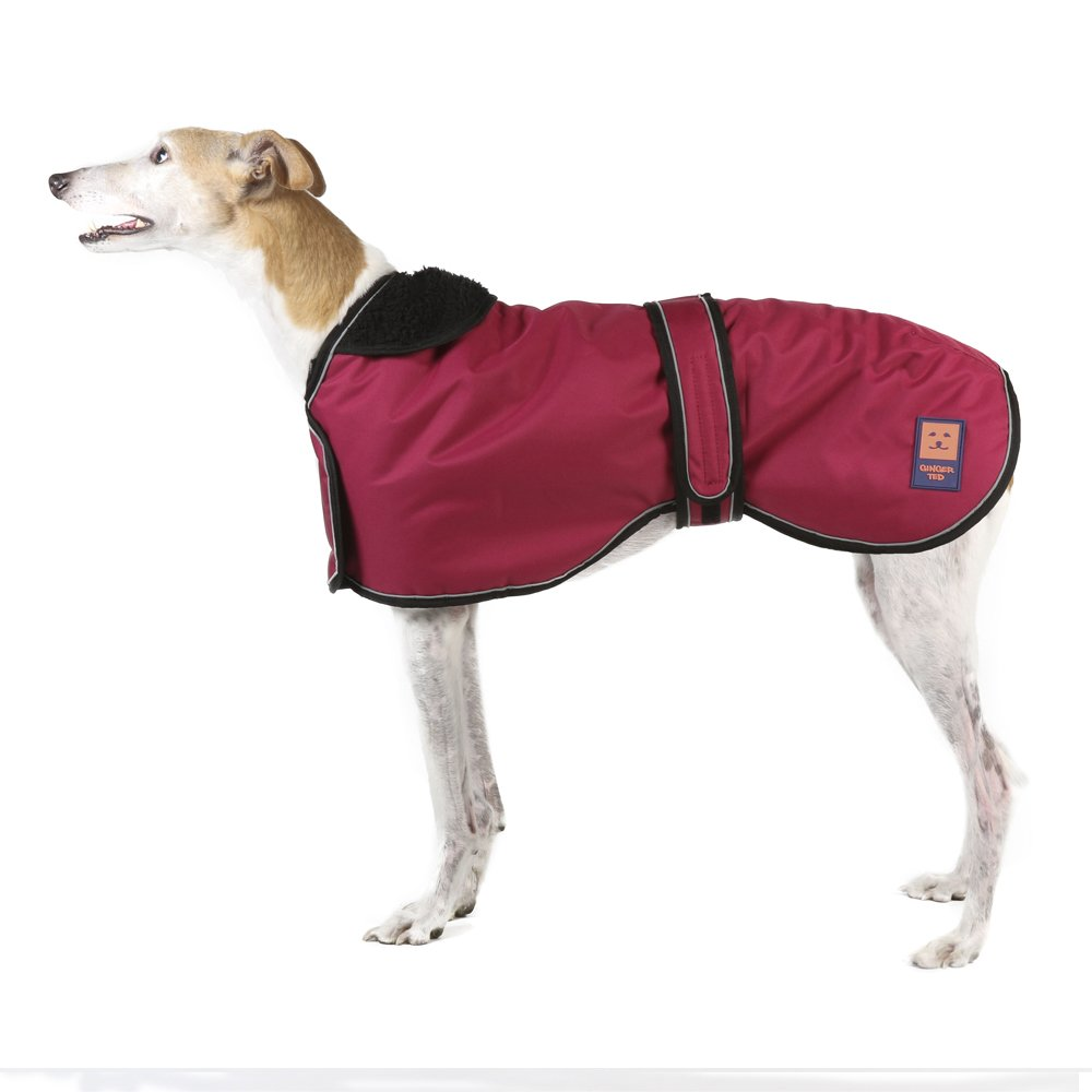 Ginger Ted Dog Coat