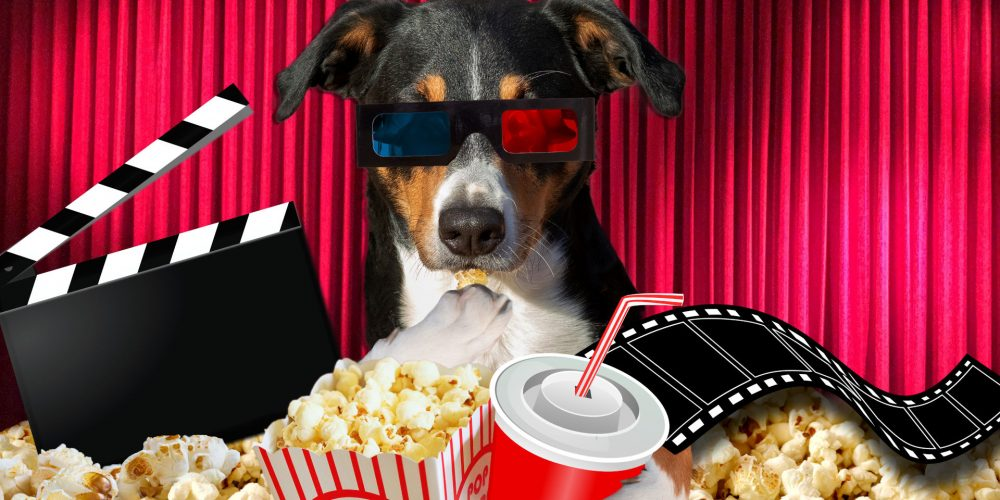 23 great dog names for movie lovers in 2020